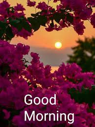 find latest good morning images , good morning quotes & good morning & good morning quotes for him & good morning quotes inspirational & good mornin Good Morning Motivation, Good Morning Msg, Good Morning Tuesday, Good Morning Flowers, Good Morning Picture, Good Morning Messages, Morning Morning, Morning Coffee, Positive Good Morning Quotes