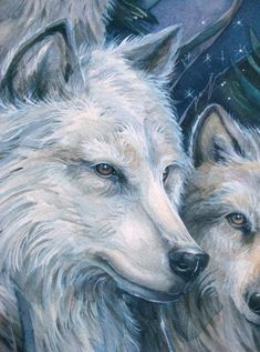 Dear Friends, What is our fascination with wolves? Is it perhaps some primal memory of the first...