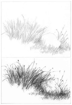 Barns Grass Rocks and Water - Drawing NatureAt one time or another, you will wish to include other elements such as barns, grass, rocks or water in your landscape drawings. Landscape Drawing Tutorial, Landscape Pencil Drawings, Landscape Sketch, Pencil Art Drawings, Tree Pencil Sketch, Nature Sketches Pencil, Grass Drawing, Water Drawing, Plant Drawing