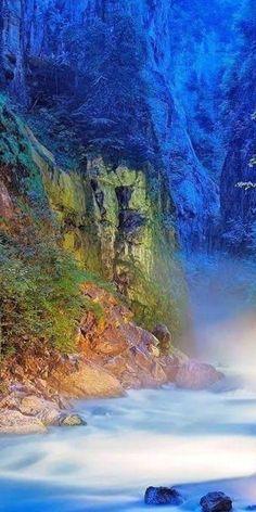 "artofnature-9: ""Source :art of nature """