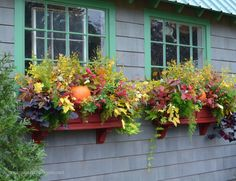 42 Cheap and Easy Fall Window Boxes Ideas - decortip Fall Flower Boxes, Window Box Flowers, Fall Flowers, Window Planters, Fall Planters, Planter Boxes, Planter Ideas, Garden Planters, Winter Window Boxes