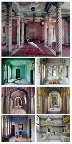 India Song by Karen Knorr.