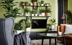 Met een paar wandplanken maak je een groene omkadering van planten rond de tv: natuurlijke camouflage.