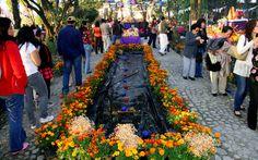 Ofrenda del Pueblo Dia de Muertos en Tepotzotlan