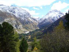 Switzerland, Val Forno nr Maloja, towards Passo del Muretto