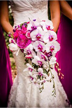 Cascading orchids ~  Alimario Photo, Floral Design: A Garden Party LLC | bellethemagazine.com