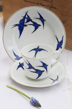 swallow china