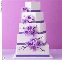 cute cake design