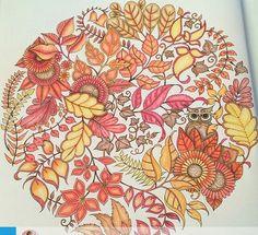 Mandala Owls Enchanted Forest. Mandala de Corujas Floresta Encantada. Johanna…