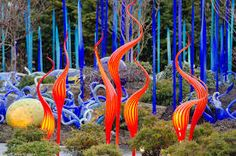 Image result for dale chihuly garden