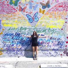 Dream Big Butterfly Mural 621 N La Cienega Blvd, West Hollywood, CA 90069