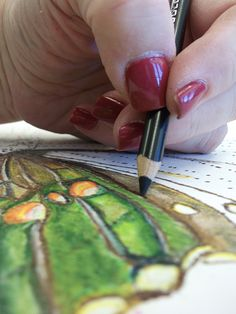 Prismacolor Pecil Techniques. During this workshop, students will learn how to transfer an image onto illustration board using graphite pencils and a grid. Students will then learn Prismacolor pencil techniques to bring their drawings to life.
