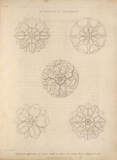 Elements of ornament. Showing the application of various kinds of leaves in forming roses, pateras, &c, &c.
