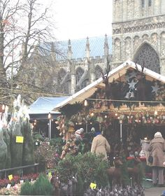 Exeter Christmas Market looking stunning the the setting of the Cathedral grounds.