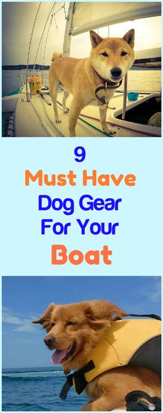 Some dogs are great swimmers; others never will be, because of fear of the water or because they are just not anatomically built for swimming (like long dogs with short legs). But boating enthusiasts who are dog lovers find a way to take both swimmers Sailboat Living, Living On A Boat, Dogs On Boats, Surf Pool, Leelah, Buy A Boat, Boat Insurance, Boat Stuff, Dog Items
