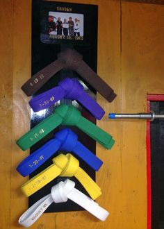The Way of the Woman Warrior: DIY Martial Arts Belt Display