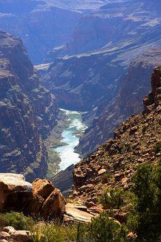 아찔한 계곡 Toroweap, Grand Canyon