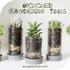 Upcycle everyday objects that are useful for gardening