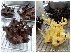 Tuto corail ou algues en chocolat.