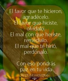 frases, español, amor, vida, paz, proposito