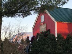 L.L Bean Christmas Village Freeport Maine, an original photo by Cynthia A