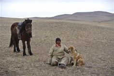 Mongolian dog tradition revived to protect sheep, leopards