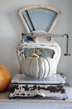 Vintage Love, Vintage Decor, Vintage Antiques, Vintage Stuff, White Pumpkins, Fall Pumpkins, Old Scales, Autumn Decorating, Decorating Ideas