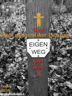 'Maak mij levend door Uw wegen.' Onze eigen weg loopt dood. Psalm 119:37b HSV