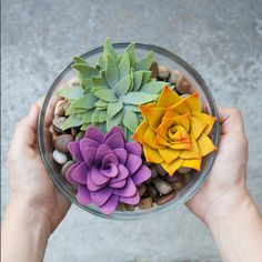 """Felt Succulent Petal Project Kit - as seen in """"Mollie Makes"""" Magazine - issue 44"""