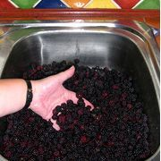 How to Measure Blackberries Whole or Crushed for Jam | eHow