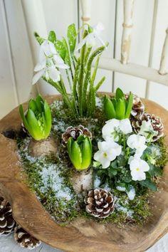 Frühlingsgrüße im Winter - Spring decoration - Dekoration After Christmas, Christmas Diy, Christmas Decorations, Deco Floral, Arte Floral, Art Floral Noel, Spring Decoration, Deco Nature, Nature Table