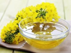Difference between: canola oil and rapeseed oil.