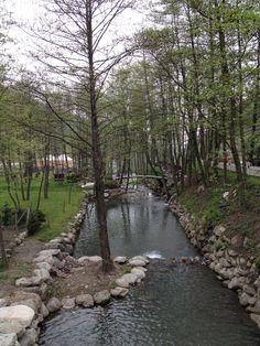 Naturköy