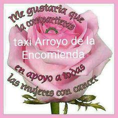 http://ift.tt/2l74hBq Servicio 24horas. 615674413