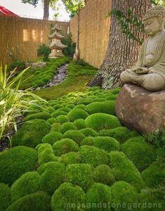 A very small but beautiful moss garden. Moss & Stone Gardens #japanese garden #JapaneseGarden