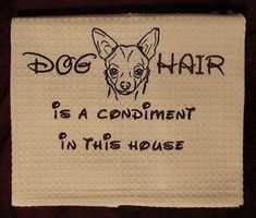 Dog hair is a condiment in this house