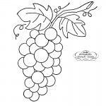 Bunch of Grapes Embroidery Transfer Pattern Cute Embroidery Patterns, Embroidery Transfers, Cross Stitch Embroidery, Arts And Crafts Projects, Raisin, Textures Patterns, Coloring, French Knots, Wine Corks