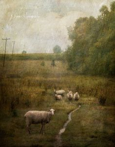 Oil and Water | Jamie Heiden