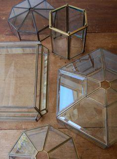 Glass light fixtures make good terrariums, too!