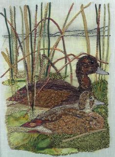 Southern Pochard with Lesley Turpin-Delport