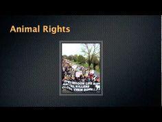 Video: Conservation of Biodiversity