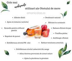 Cele mai neobisnuite utilizari ale otetului de mere Cantaloupe, Ale, Fruit, Food, Ale Beer, Essen, Meals, Yemek, Eten