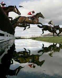 The water jump at Cheltenham