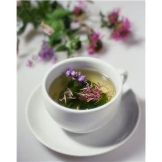 Nine Healing Herbs You Can Grow Yourself in a Healing Garden - and how to make an herbal tea