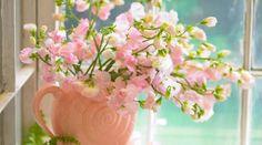 flores en jarron - Buscar con Google
