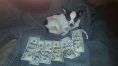 she loves money