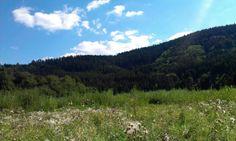 Lesy Mountains, Nature, Travel, Naturaleza, Viajes, Destinations, Traveling, Trips, Nature Illustration