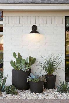 desert landscaping Succulents in pots paired with painted brick desert land .- Sukkulenten in Tpfen gepaart mit bemalten Ziegelwstenlandschaften Garten Succulents in pots paired with painted brick desert landscapes, -
