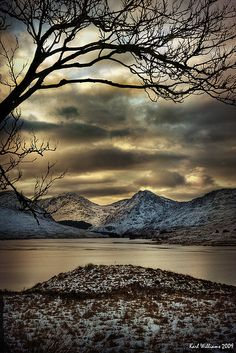 Arklet Branches by Karl Williams. Loch Arklet, Trossachs, Scotland.