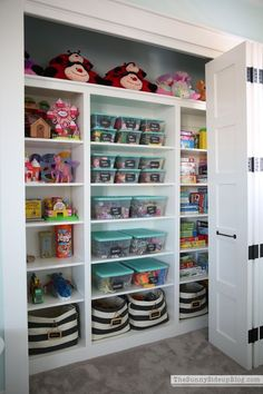 Now that's an organized play closet! Wish this was in my kids' playroom!